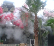Quy trình lắp máy phun sương quận 9